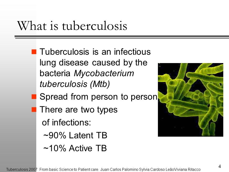 What is tuberculosis Tuberculosis is an infectious lung disease caused by the bacteria Mycobacterium tuberculosis (Mtb) Spread from person to person There are two types of infections: ~90% Latent TB ~10% Active TB 4 Tuberculosis 2007: From basic Science to Patient care.