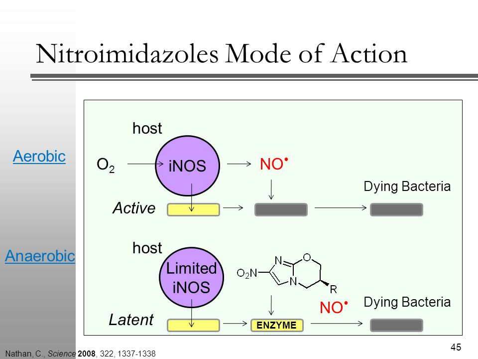 Nitroimidazoles Mode of Action 45 Dying Bacteria host Limited iNOS ENZYME Latent iNOS O2O2 NO Dying Bacteria host Active Anaerobic Aerobic NO Nathan, C., Science 2008, 322, 1337-1338