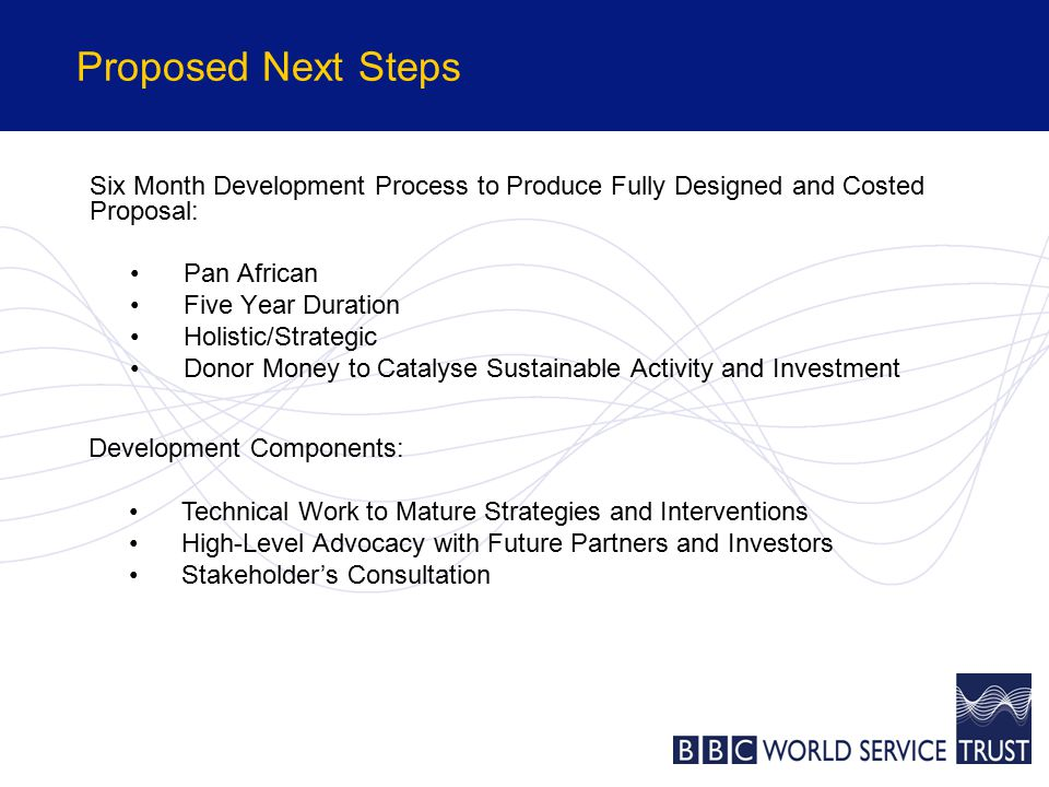 Proposed Next Steps Six Month Development Process to Produce Fully Designed and Costed Proposal: Pan African Five Year Duration Holistic/Strategic Donor Money to Catalyse Sustainable Activity and Investment Development Components: Technical Work to Mature Strategies and Interventions High-Level Advocacy with Future Partners and Investors Stakeholder's Consultation