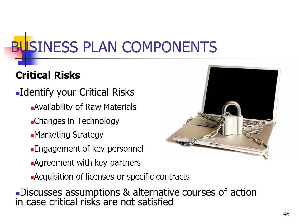 Business plan risk