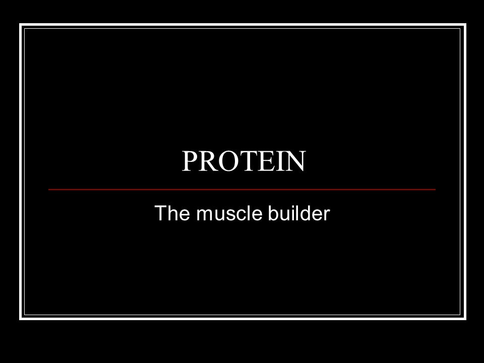 PROTEIN The muscle builder