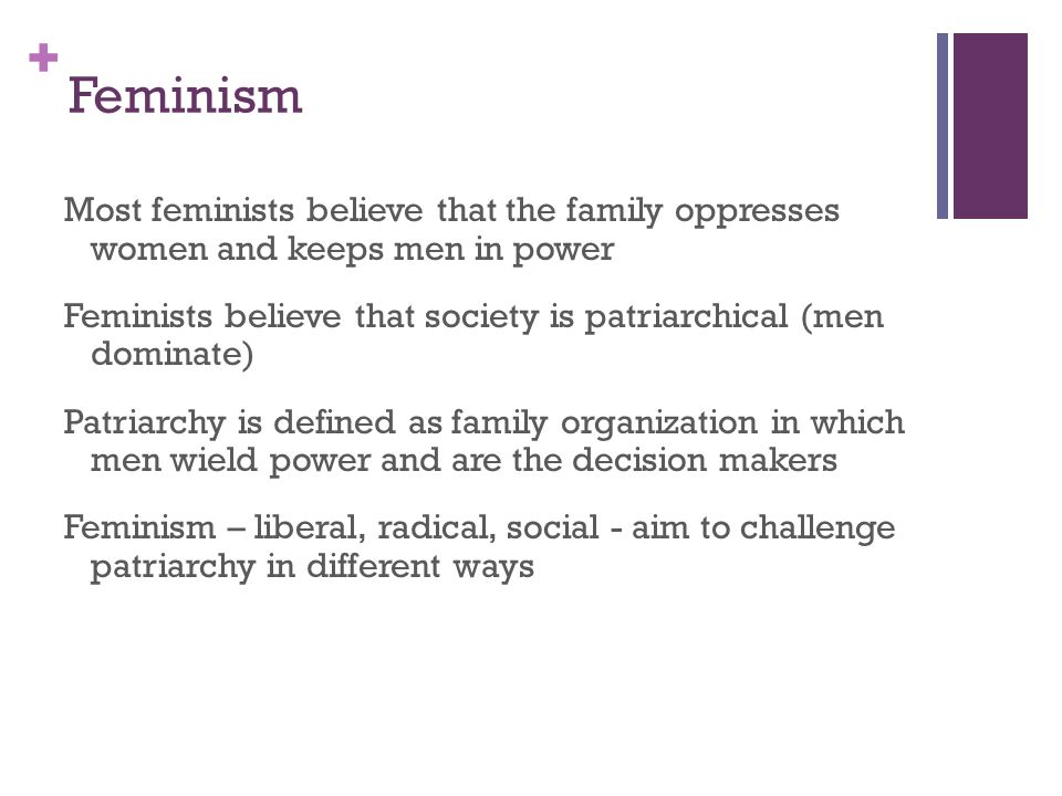 + Theoretical Perspectives: 1 Feminism