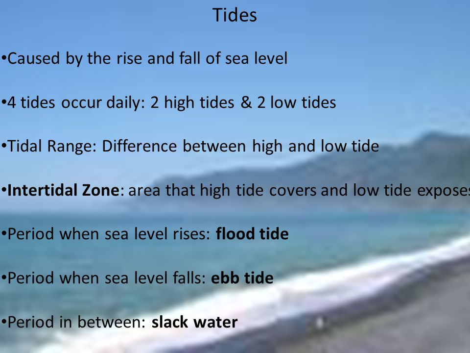 Tides Caused by the rise and fall of sea level 4 tides occur daily: 2 high tides & 2 low tides Tidal Range: Difference between high and low tide Intertidal Zone: area that high tide covers and low tide exposes Period when sea level rises: flood tide Period when sea level falls: ebb tide Period in between: slack water