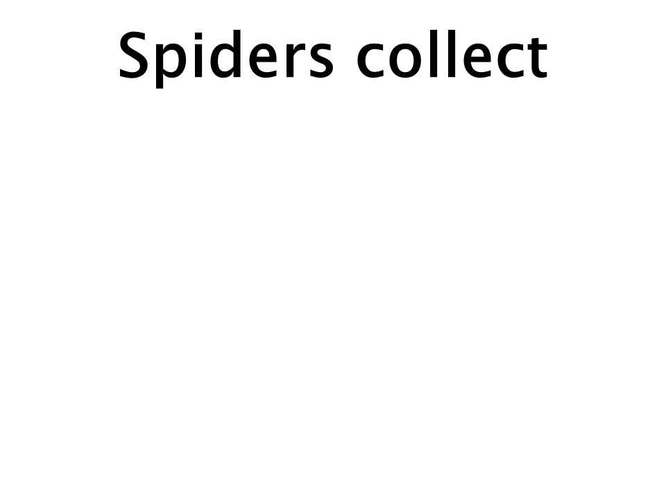 Spiders collect