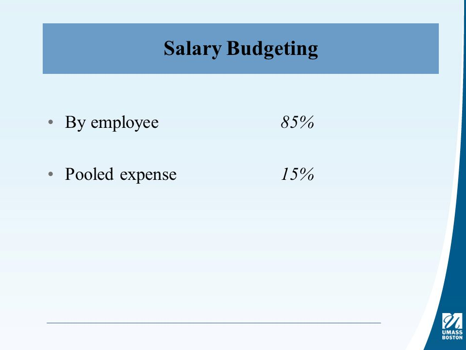 Salary Budgeting By employee85% Pooled expense15%