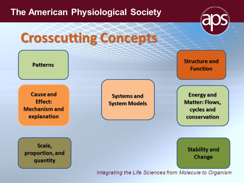Integrating the Life Sciences from Molecule to Organism The American Physiological Society Crosscutting Concepts Patterns Cause and Effect: Mechanism and explanation Scale, proportion, and quantity Systems and System Models Energy and Matter: Flows, cycles and conservation Stability and Change Structure and Function
