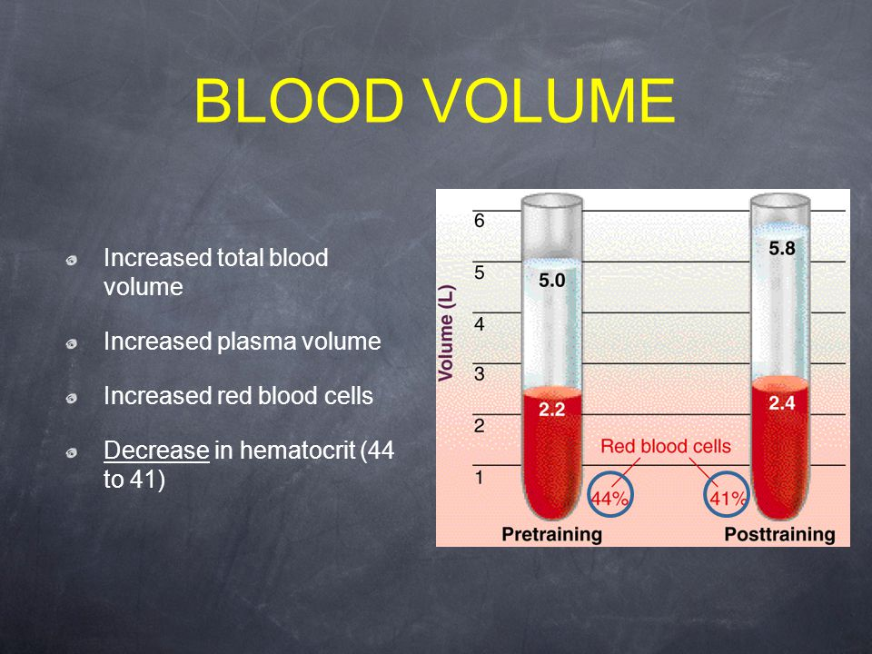 BLOOD VOLUME Increased total blood volume Increased plasma volume Increased red blood cells Decrease in hematocrit (44 to 41)