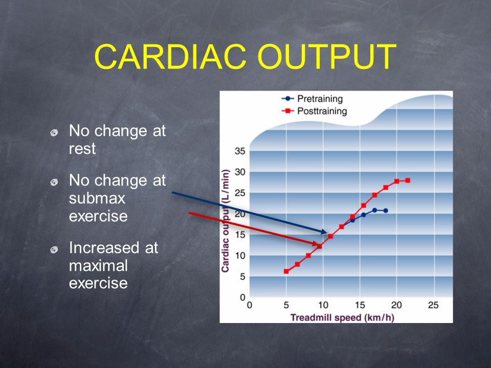 CARDIAC OUTPUT No change at rest No change at submax exercise Increased at maximal exercise