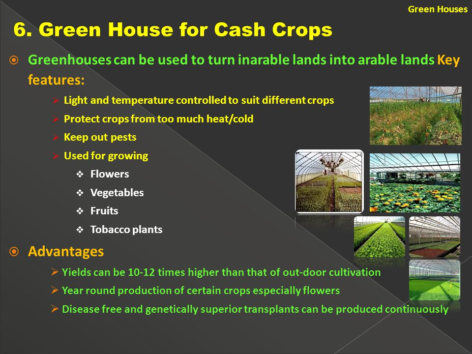  Greenhouses can be used to turn inarable lands into arable lands Key features:  Light and temperature controlled to suit different crops  Protect crops from too much heat/cold  Keep out pests  Used for growing  Flowers  Vegetables  Fruits  Tobacco plants  Advantages  Yields can be 10-12 times higher than that of out-door cultivation  Year round production of certain crops especially flowers  Disease free and genetically superior transplants can be produced continuously Green Houses
