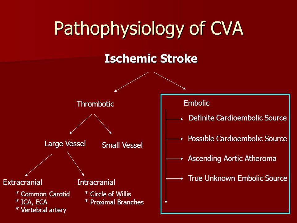 Transthoracic Echocardiography in Cerebrovascular Disease Nisha I ...