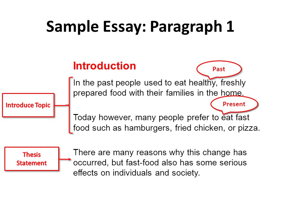 Cause And Effect Essays Cause And Effect Its Simple Just Four  Sample Essay Paragraph  Introduction In The Past People Used To Eat  Healthy Freshly