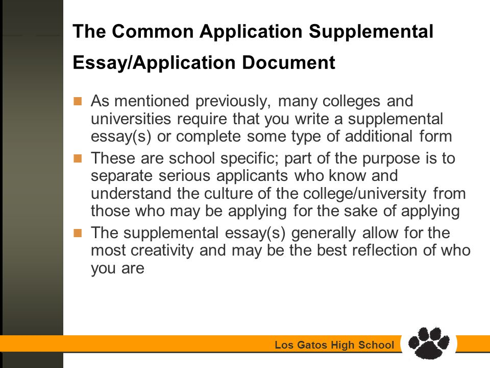 Write my common application essay format requirements