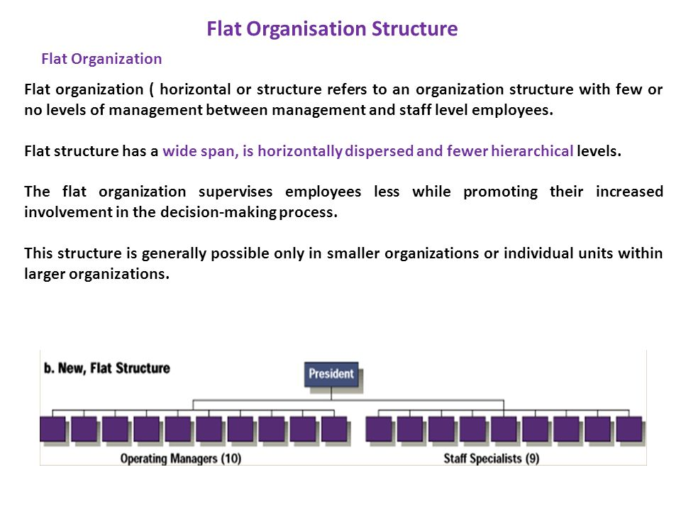 Flat organization ( horizontal or structure refers to an organization structure with few or no levels of management between management and staff level