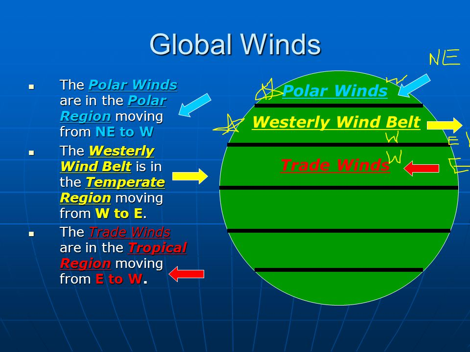 Global Winds The Polar Winds are in the Polar Region moving from NE to W The Polar Winds are in the Polar Region moving from NE to W The Westerly Wind Belt is in the Temperate Region moving from W to E.