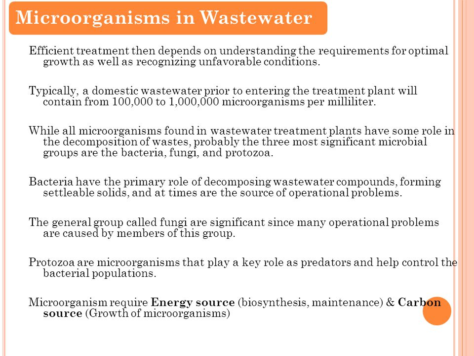 E nvironmental e ngineering 343 lecture 10 wastewater treatment 2 efficient treatment then depends on understanding the requirements for optimal growth as well as recognizing unfavorable publicscrutiny Image collections
