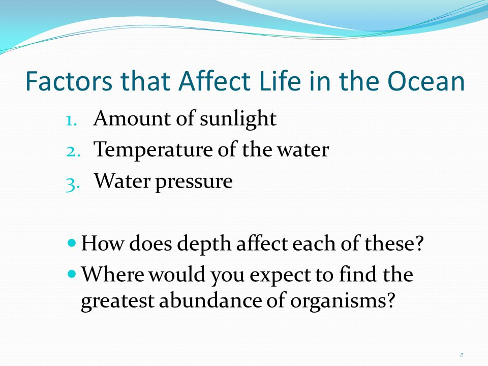 Three Major Groups of Organisms Grouped according to their habits and where in the water they live 1.