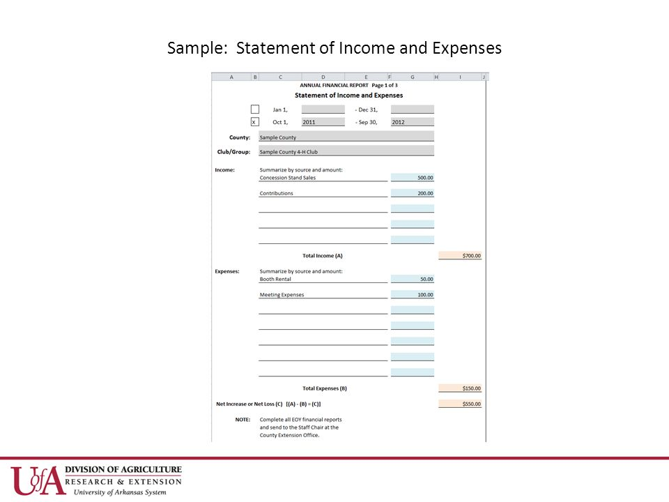 Sample: Statement of Income and Expenses