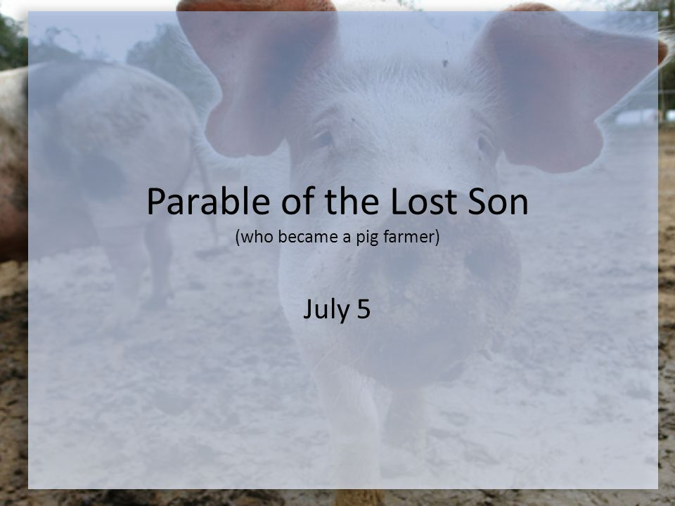 Parable of the Lost Son (who became a pig farmer) July 5