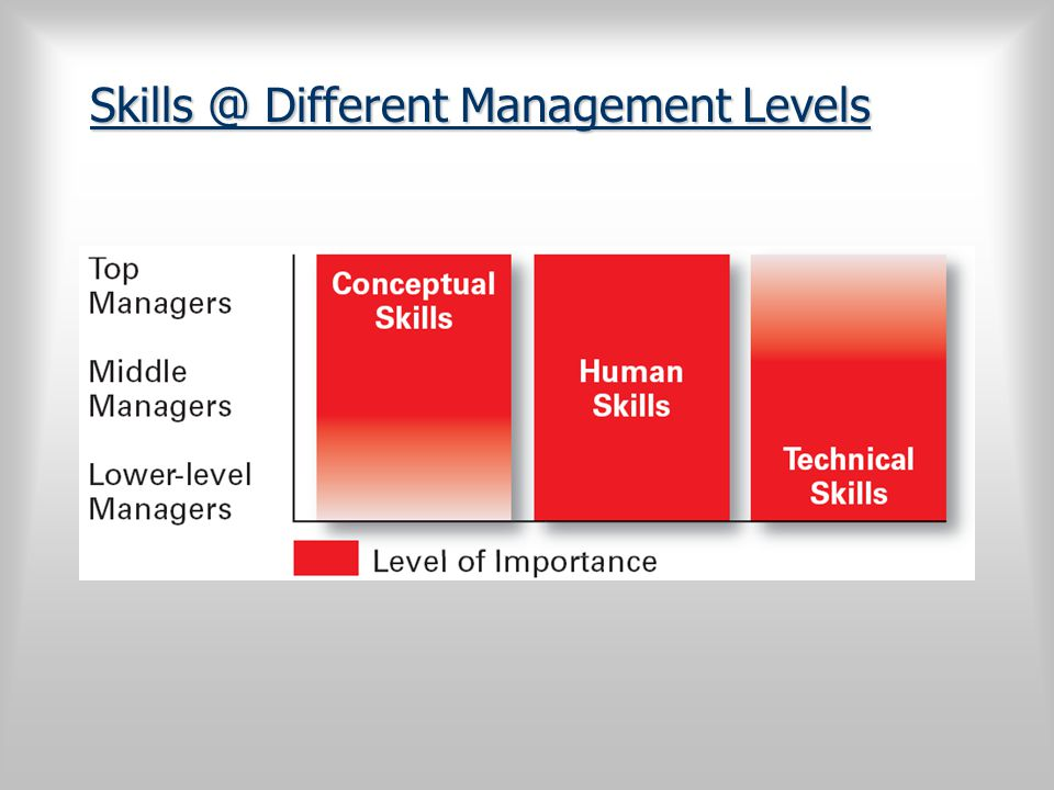 Skills @ Different Management Levels