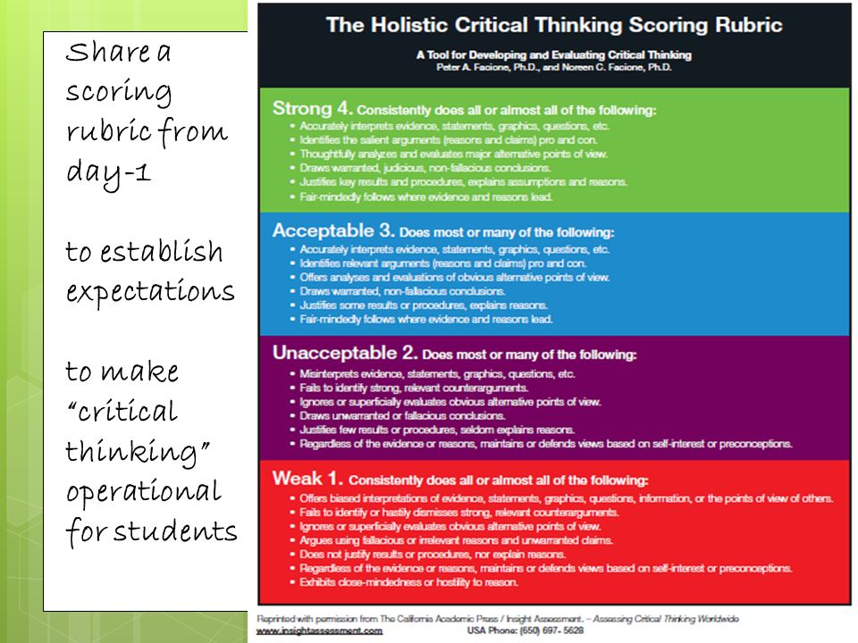 Holistic Critical Thinking Scoring Rubric   Critical Thinking      SciELO  SA