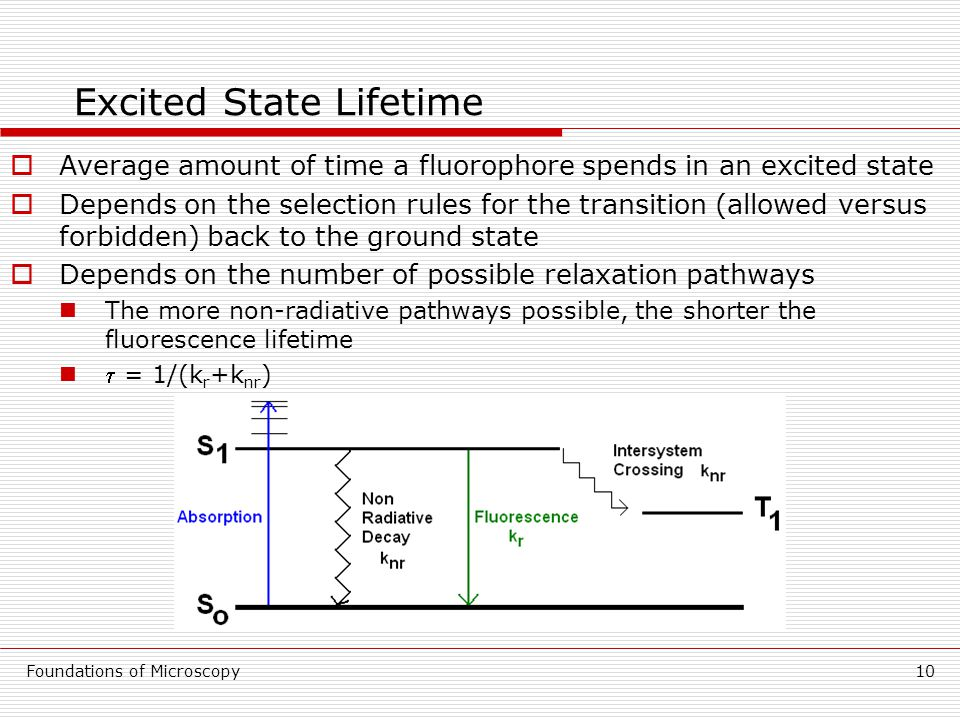 Foundations of Microscopy10 Excited State Lifetime  Average amount of time a fluorophore spends in an excited state  Depends on the selection rules for the transition (allowed versus forbidden) back to the ground state  Depends on the number of possible relaxation pathways The more non-radiative pathways possible, the shorter the fluorescence lifetime  = 1/(k r +k nr )