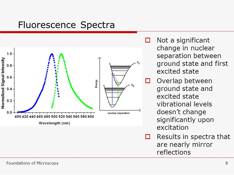 Foundations of Microscopy8 Fluorescence Spectra  Not a significant change in nuclear separation between ground state and first excited state  Overlap between ground state and excited state vibrational levels doesn't change significantly upon excitation  Results in spectra that are nearly mirror reflections