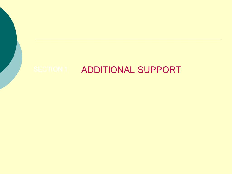 ADDITIONAL SUPPORT SECTION 1