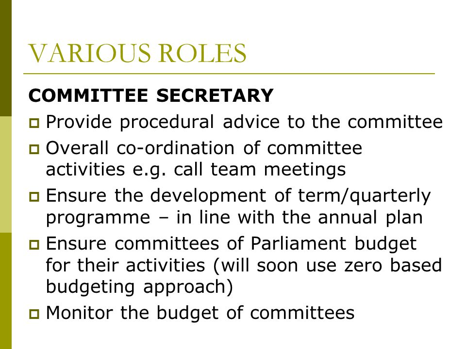 VARIOUS ROLES COMMITTEE SECRETARY  Provide procedural advice to the committee  Overall co-ordination of committee activities e.g.