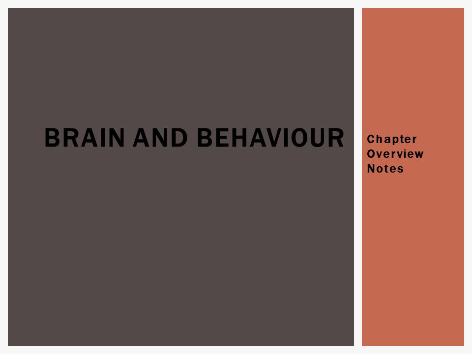 Chapter Overview Notes BRAIN AND BEHAVIOUR