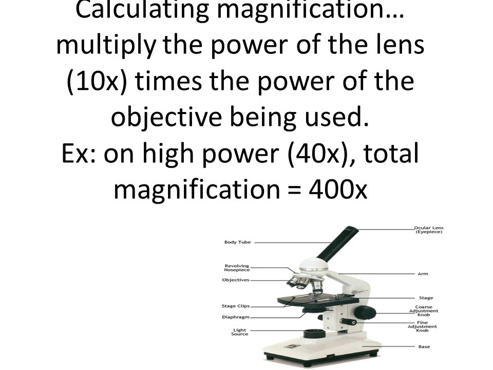 Calculating magnification… multiply the power of the lens (10x) times the power of the objective being used.