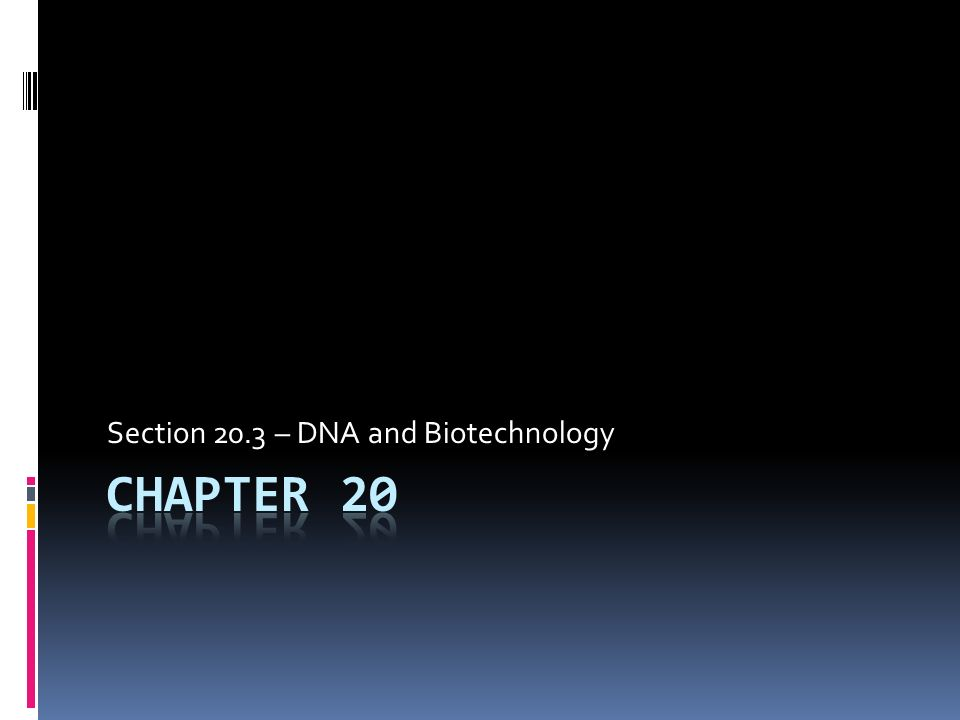 Section 20.3 – DNA and Biotechnology