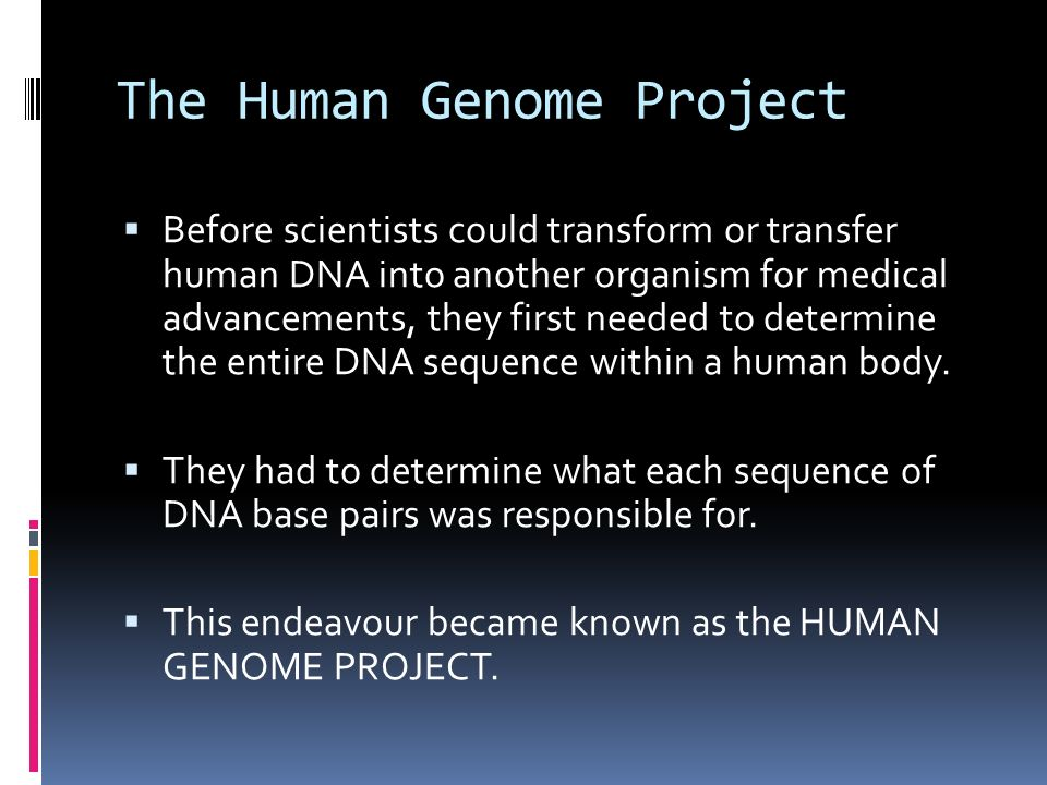 The Human Genome Project  Before scientists could transform or transfer human DNA into another organism for medical advancements, they first needed to determine the entire DNA sequence within a human body.