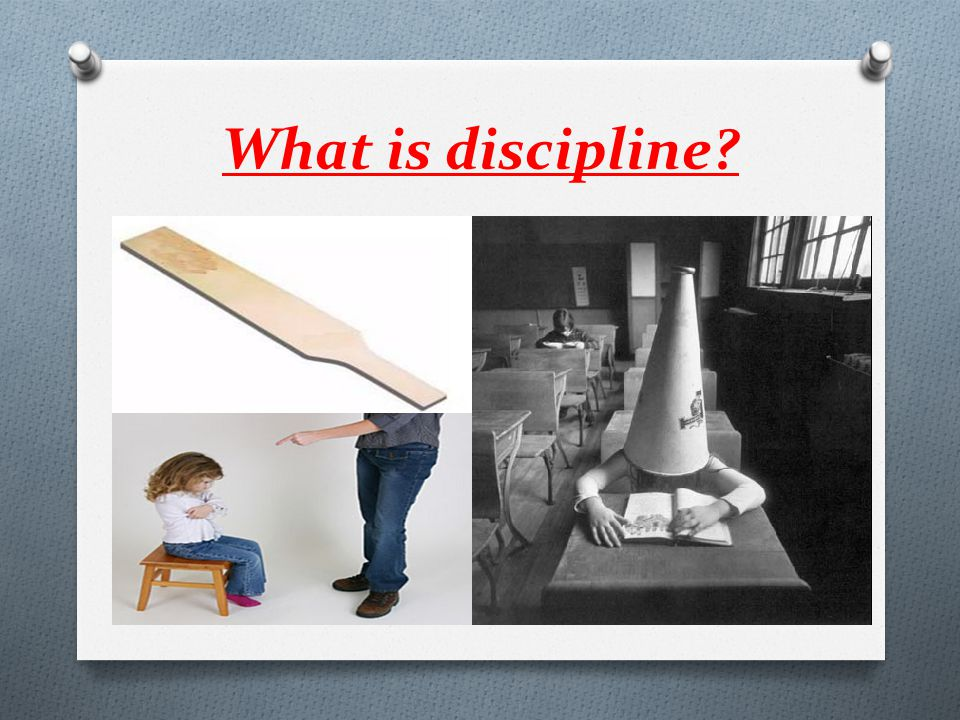 What is discipline