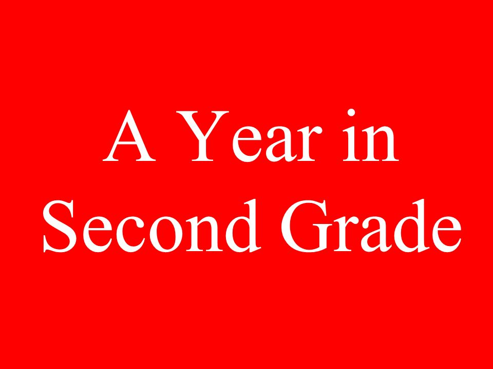 A Year in Second Grade