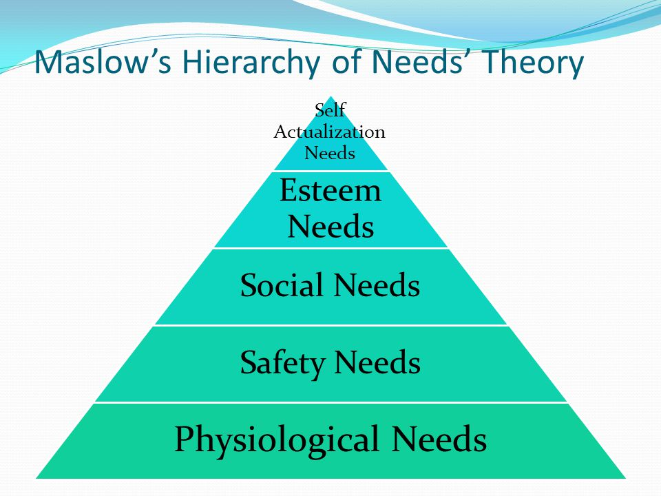 Maslow's Hierarchy of Needs' Theory Self Actualization Needs Esteem Needs Social Needs Safety Needs Physiological Needs