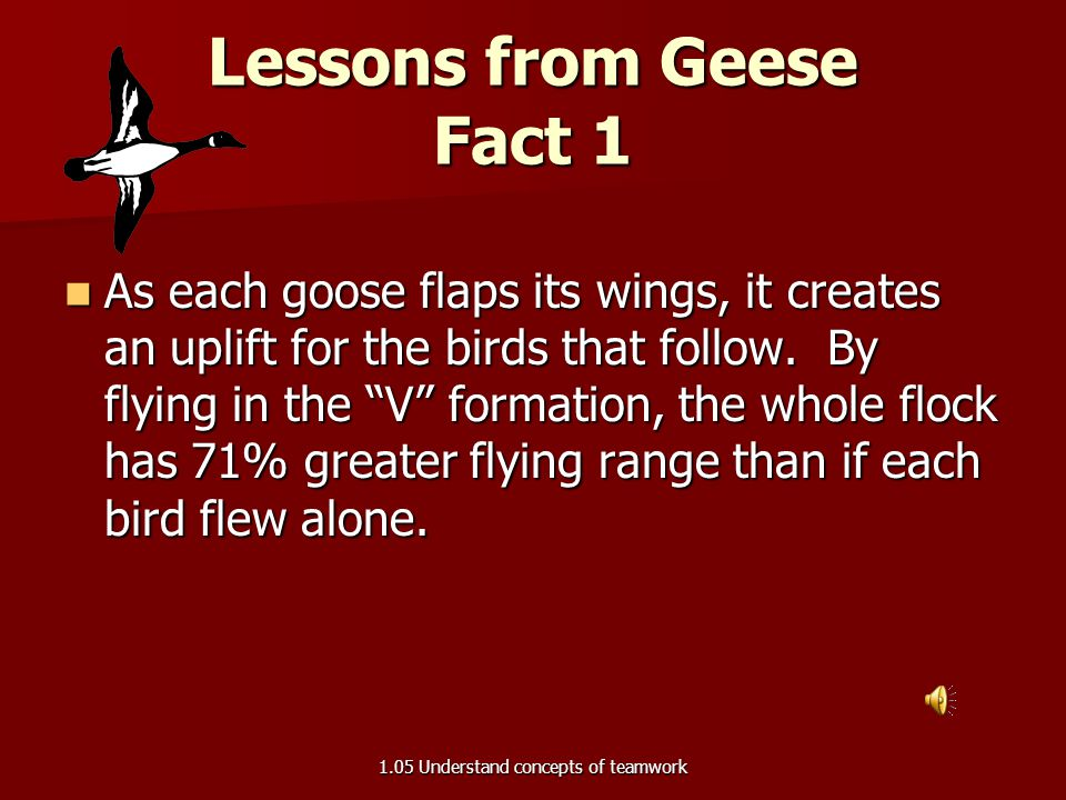Lessons from Geese 1.05 Understand concepts of teamwork