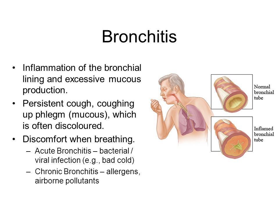 Bronchitis Inflammation of the bronchial lining and excessive mucous production.