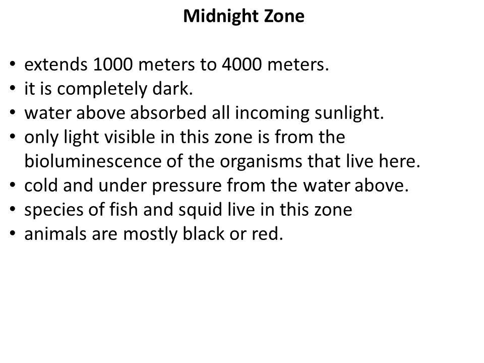 Midnight Zone extends 1000 meters to 4000 meters. it is completely dark.