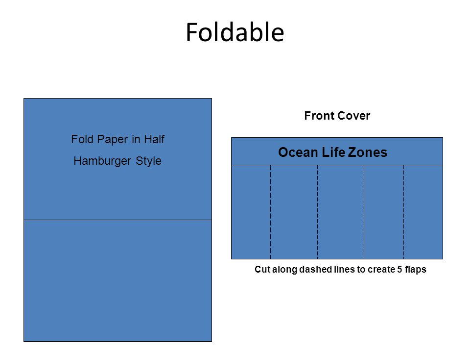 Foldable Front Cover Fold Paper in Half Hamburger Style Cut along dashed lines to create 5 flaps Ocean Life Zones