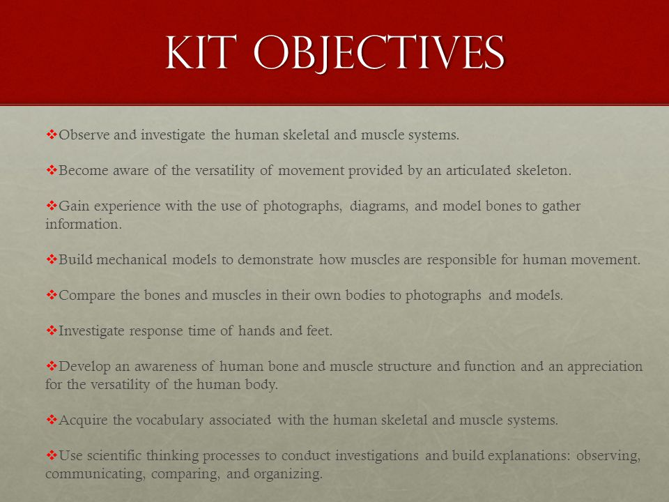 human body sums 3. kit objectives  observe and investigate the, Muscles