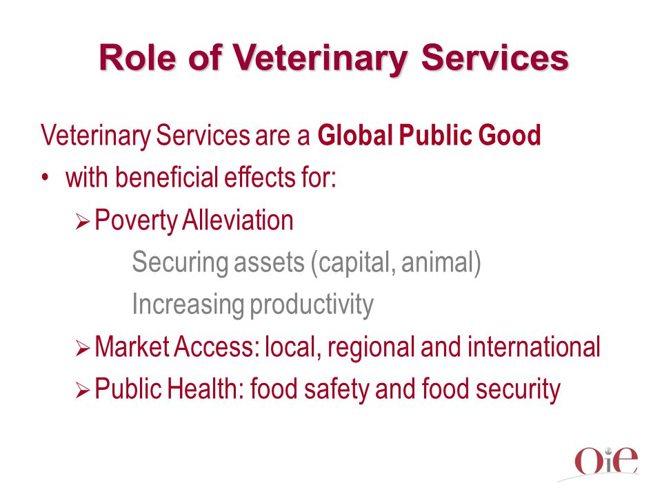 Role of Veterinary Services Veterinary Services are a Global Public Good with beneficial effects for:  Poverty Alleviation Securing assets (capital, animal) Increasing productivity  Market Access: local, regional and international  Public Health: food safety and food security