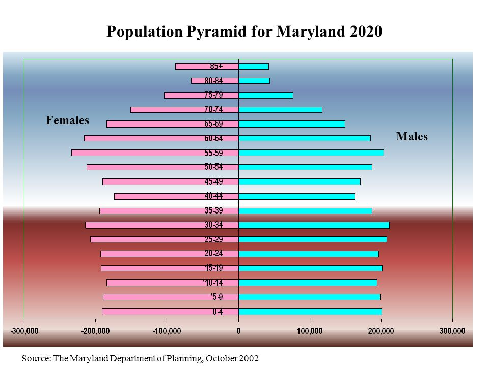 Population Pyramid for Maryland 2020 Source: The Maryland Department of Planning, October 2002 Males Females
