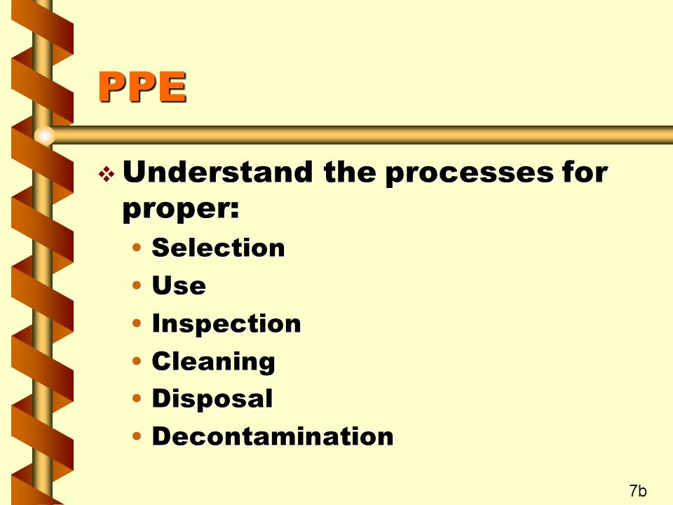 PPE v Understand the processes for proper: SelectionSelection UseUse InspectionInspection CleaningCleaning DisposalDisposal DecontaminationDecontamination 7b