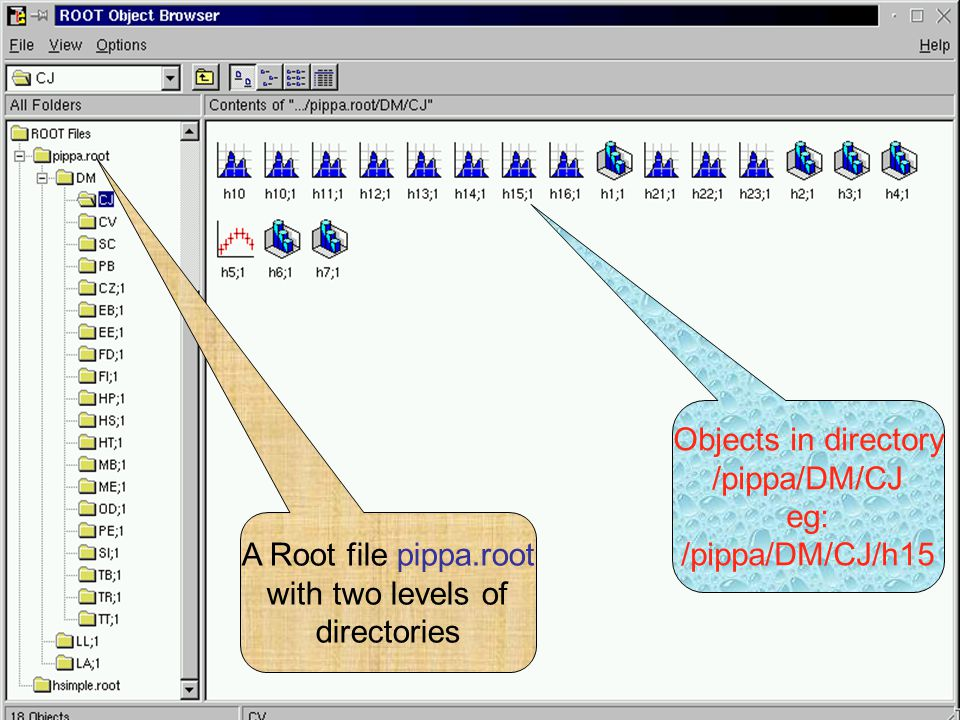 Introduction to ROOT53 A Root file pippa.root with two levels of directories Objects in directory /pippa/DM/CJ eg: /pippa/DM/CJ/h15