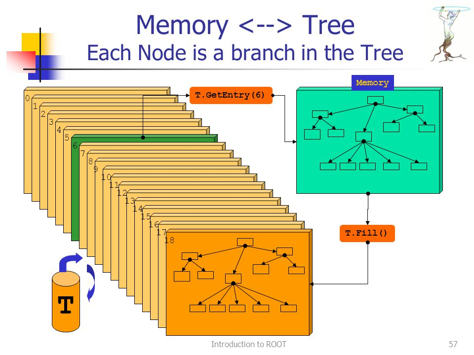 Introduction to ROOT57 Memory Tree Each Node is a branch in the Tree tr 0 1 2 3 4 5 6 7 8 9 10 11 12 13 14 15 16 17 18 T.Fill() T.GetEntry(6) T Memory