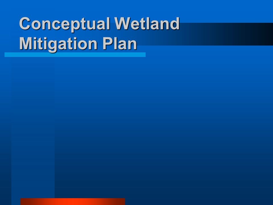 Conceptual Wetland Mitigation Plan