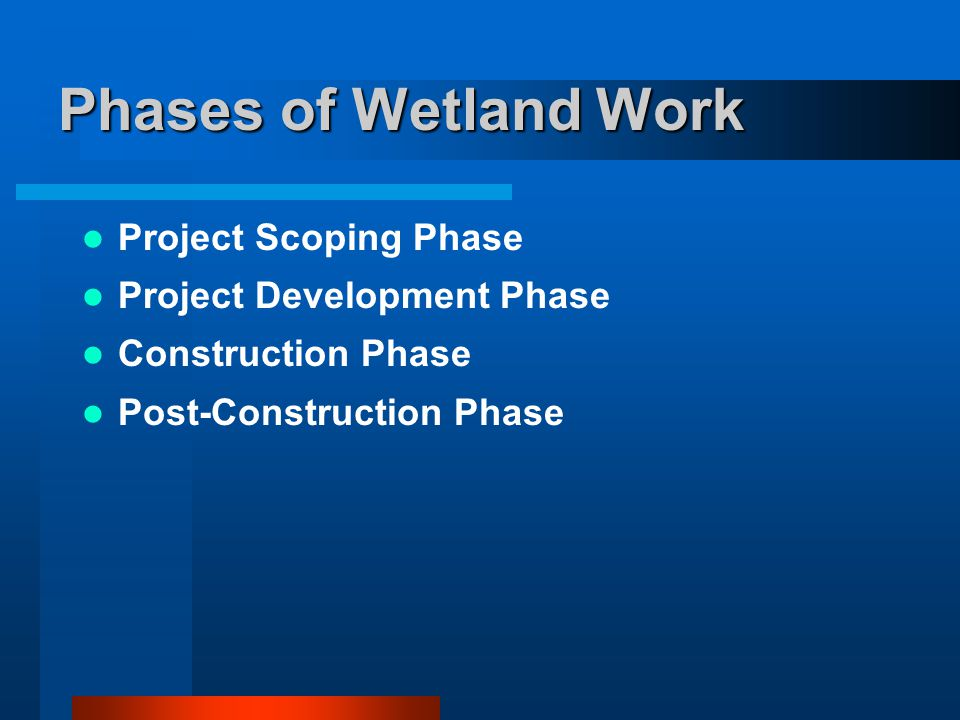 Phases of Wetland Work Project Scoping Phase Project Development Phase Construction Phase Post-Construction Phase