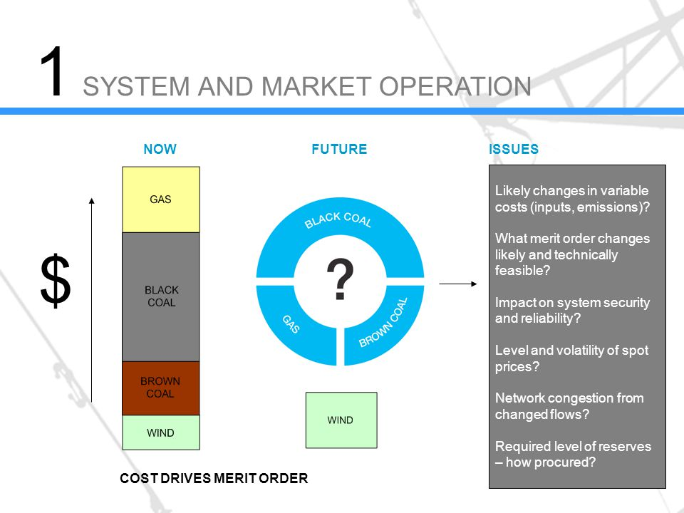 SYSTEM AND MARKET OPERATION Likely changes in variable costs (inputs, emissions).