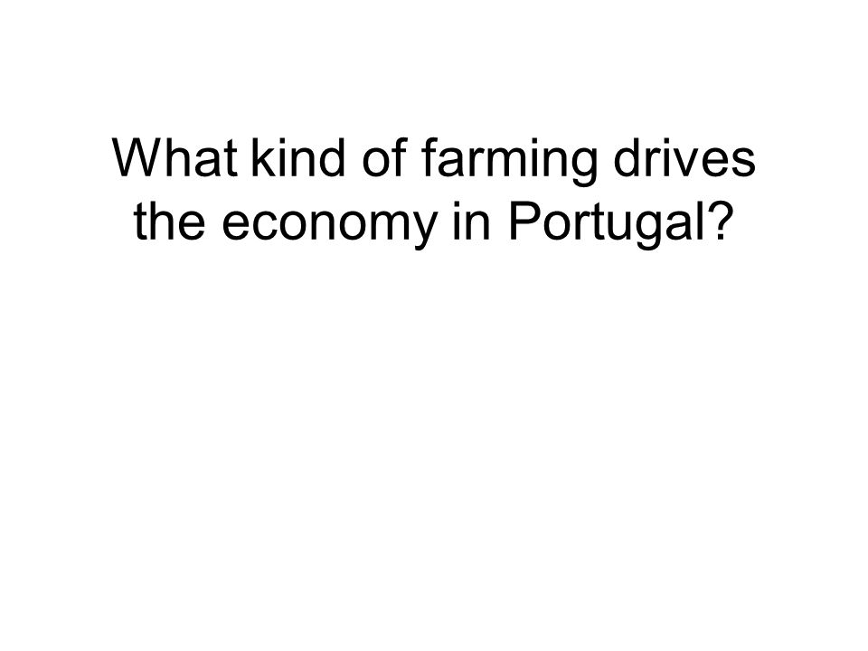 What kind of farming drives the economy in Portugal