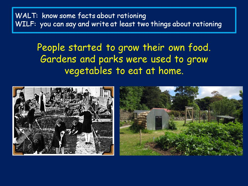 People started to grow their own food.